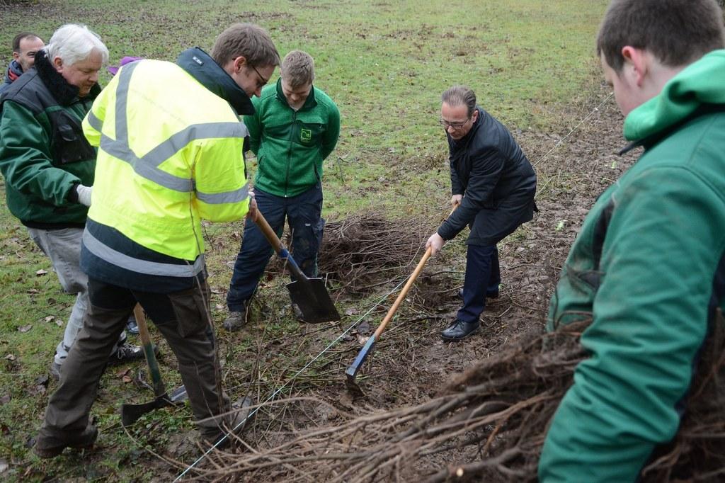 Bürgermeister Reiner Breuer legt selbst Hand an bei der Baumpflanzaktion des Berufsförderungszentrums in Schlicherum.