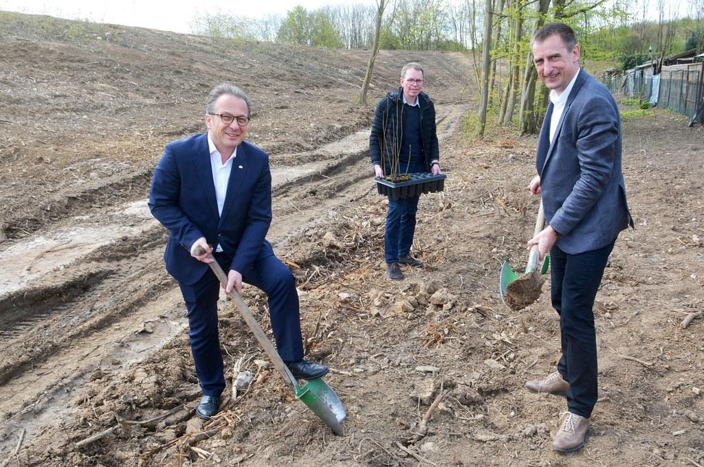 Bürgermeister Reiner Breuer und Vorstandsmitglied Lutz Bittermann beim Pflanzen der ersten Bäume