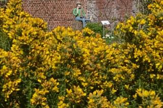 Stadt Neuss - 2020-04-08 - Erweiterung Botanischer Garten 11.jpg
