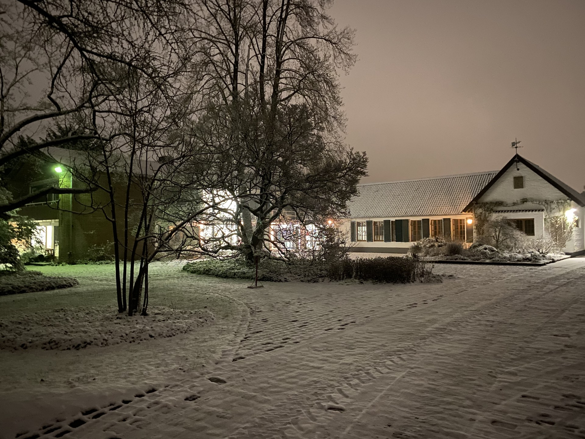 Winter im Botanischen Garten 02.jpg