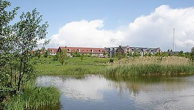 Rubrikenbild: Grundstücke und Immobilien