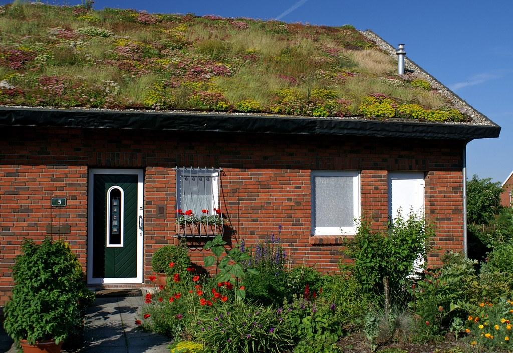 Förderprogramm Dach- und Fassadenbegrünung